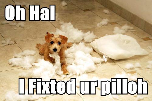 Oh hai, I fixeted ur pilloh